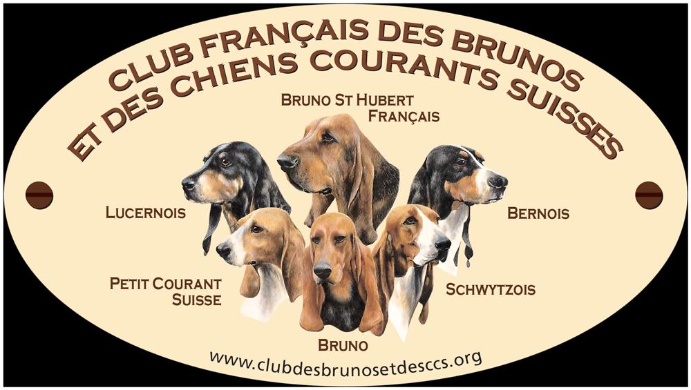 adhesif-club-francais-brunos