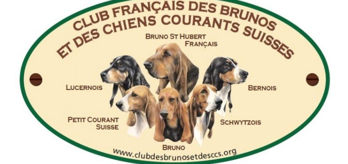 CALENDRIERS DES EPREUVES CHASSE   Club français des brunos et des